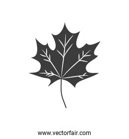autumn leaves concept, leaf of maple, silhouette style
