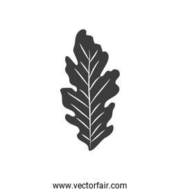 autumn leaves concept, hawthorn icon, silhouette style