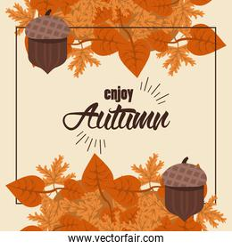 enjoy autumn lettering with leafs and nuts square frame