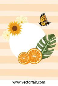 floral background with butterflies and oranges scene