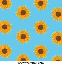 floral background with pattern of sunflowers