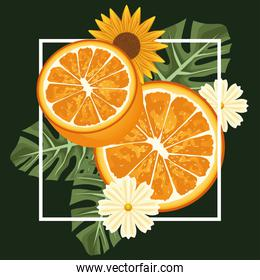 floral background with oranges and flowers in square frame