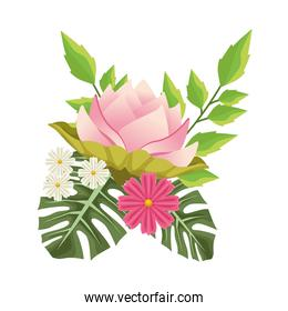 floral background with decorative pink flowers scene