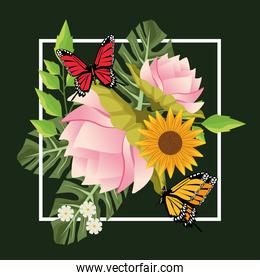 floral background in square frame with butterflies and flowers