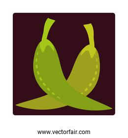 green chili pepper spice food ingredient icon block and flat