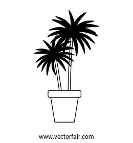 potted palms plant nature isolated design white background line style