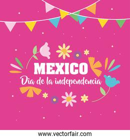 Mexico independence day design with beautiful flowers and decorative pennants