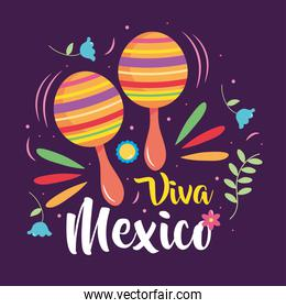 Mexico independence day design with maracas and decorative flowers