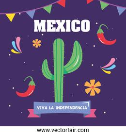 Mexico independence day design with cactus and related icons around