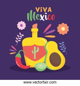 Mexico independence day design with tequila bottle, avocado and decorative flowers around