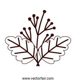autumnal foliage branch berries isolated design white background line style