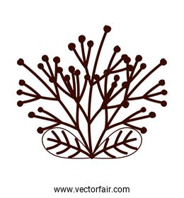 autumnal branch leaves foliage isolated design white background line style