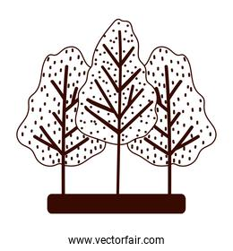forest trees season foliage autumn isolated design white background line style