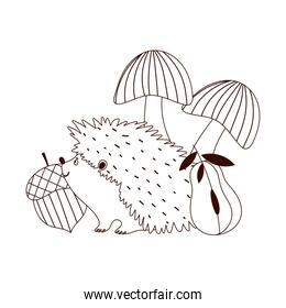 autumn hedgehog acorn pear and mushrooms isolated design white background line style