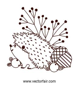 autumn hedgehog acorn berries banches isolated design white background line style