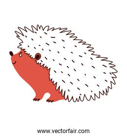 hedgehog animal fauna isolated design white background line and fill style