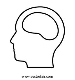 head with brain icon, line style
