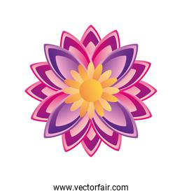 flower indian and detailed style icon vector design