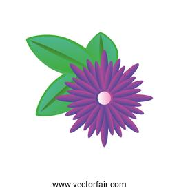 purple flower detailed style icon vector design
