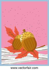 Autumn acorns with leaves banner detailed style icon vector design