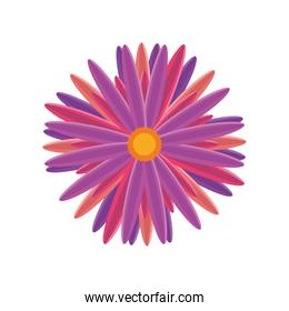 flower detailed style icon vector design