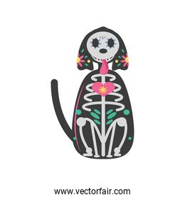 Mexican day of dead dog skull detailed style icon vector design