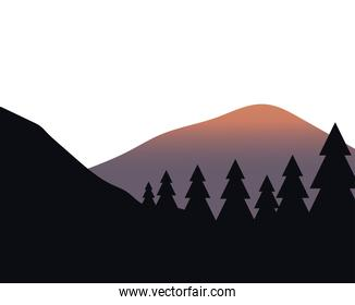 pine trees in front of mountain landscape vector design