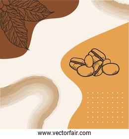 coffee beans and leaves poster paper vector design