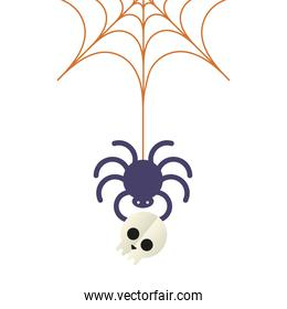 Halloween spider with skull vector design
