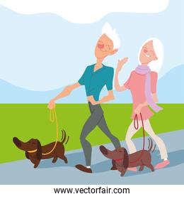elderly couple walk their dogs in the park, active seniors