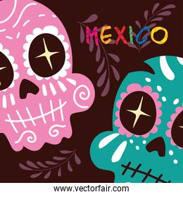 mexico label with mexican skulls, cartel