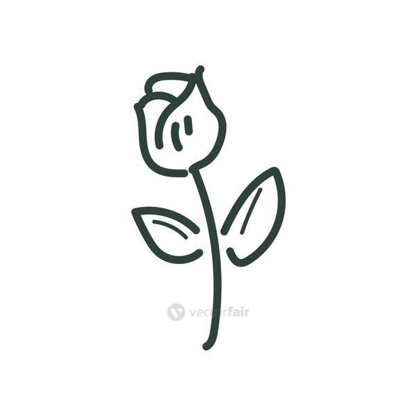 rose flower line style icon vector design