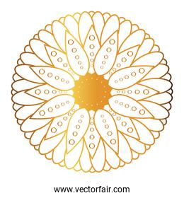 Gold mandala with flower shaped vector design