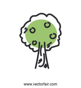 tree line and fill style icon vector design