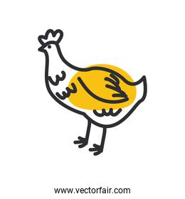 chicken line and fill style   vector design