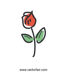 rose flower line and fill style icon vector design
