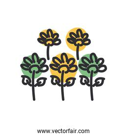 flowers line and fill style icon vector design