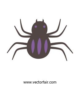 spider creepy insect isolated design icon