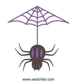 hanging spider cobweb isolated design icon