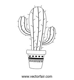 potted cactus decoration isolated design icon line style