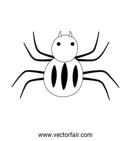 spider creepy insect isolated design icon line style