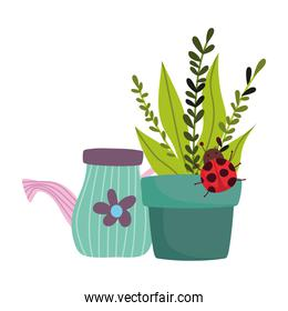 gardening, watering can potted plant with ladybug isolated design