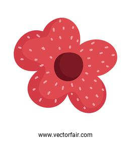 flower decoration ornament natural isolated icon design