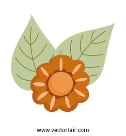 autumn flower leaves nature isolated icon design