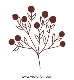 fruits in branch tree nature isolated icon design line style
