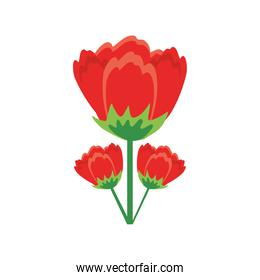 Isolated red flowers detailed style icon vector design
