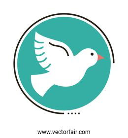 peace dove flying line and fill style icon