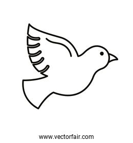 peace dove flying line style icon