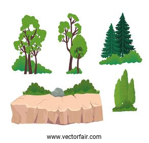 trees pines shrubs and stones vector design