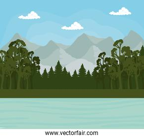 Landscape of trees pines and sea in front of mountains vector design